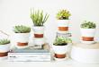 decorado vasos de barro faixa branca