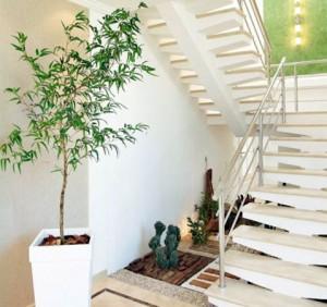 bambu-mosso