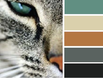 combinação de cores na decoração (5)