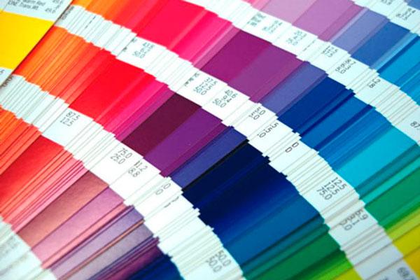 escolher a cor da tinta (2)