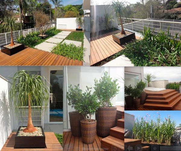 jardins decorativos jardim decorado (4)