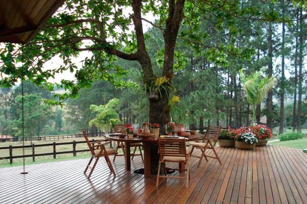 jardins decorativos jardim decorado (5)