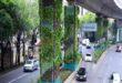 Colunas de viadutos do méxico são transformados em jardins verticais